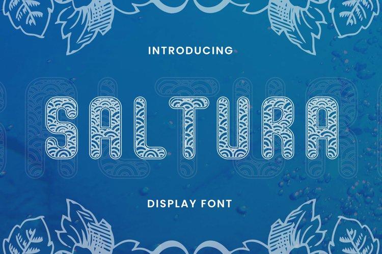 SALTURA Font example image 1