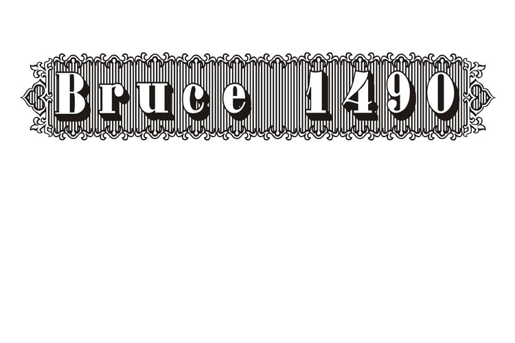 Bruce 1490 example image 1