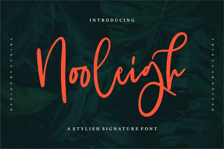 Nooleigh | A Stylish Signature Font example image 1