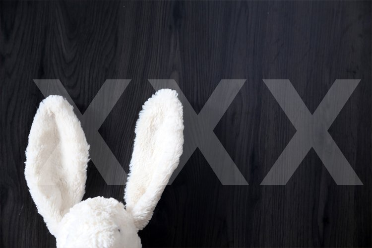 peeping bunny