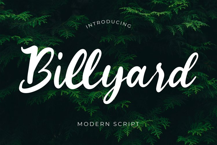 Billyard Modern Script Font example image 1