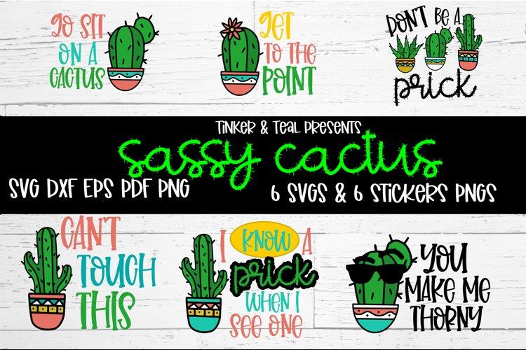 Sassy Cactus SVG Bundle example image 1