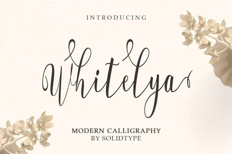 Whitelya Script example image 1