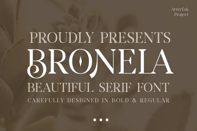 Bronela - Fashionable Serif example image 1