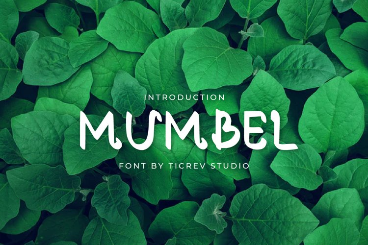 Mumbel-Display Font example image 1