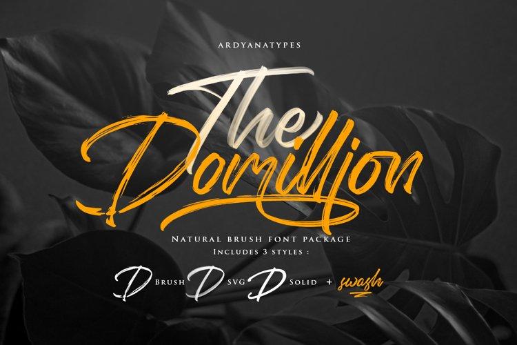 Domillion Brush Font example image 1