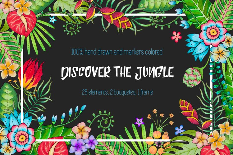 Discover the tropical jungle