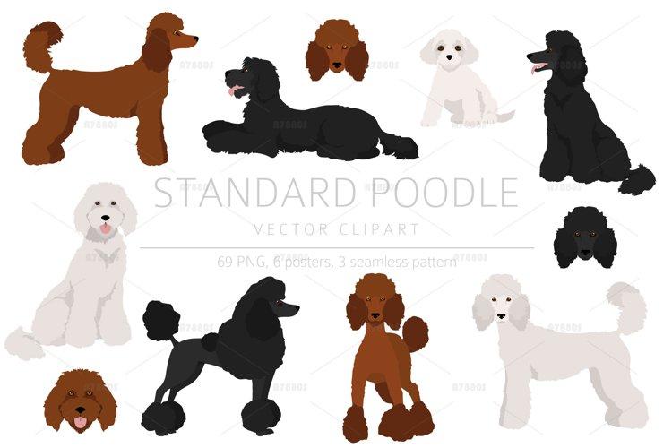 Standard poodle clipart