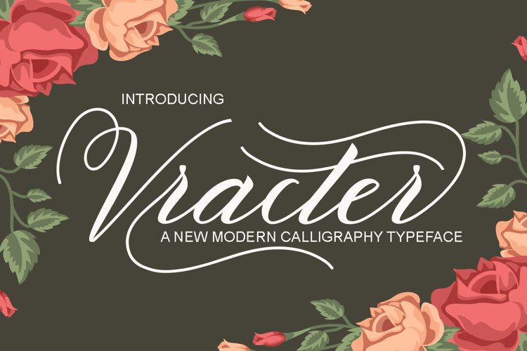 Vracter Font Duo example image 1