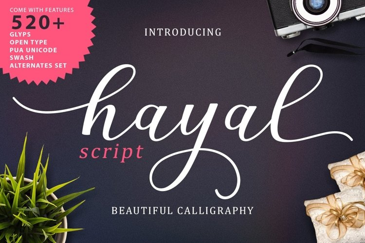 Web Font Hayal Script example image 1