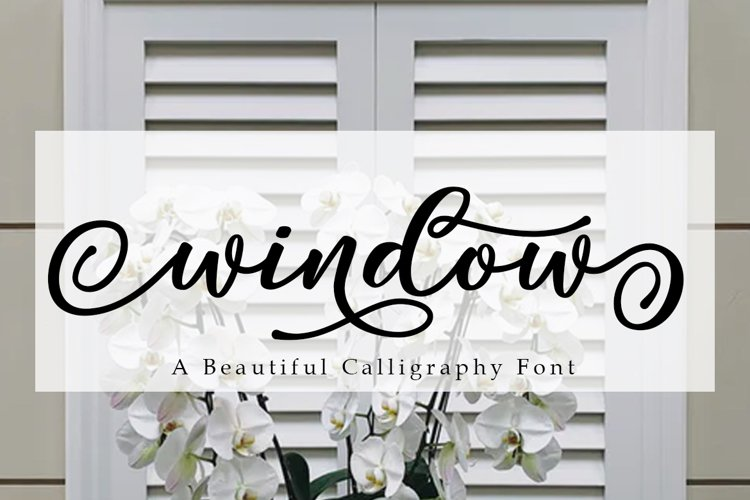 Window Script | A Calligraphy Font example image 1
