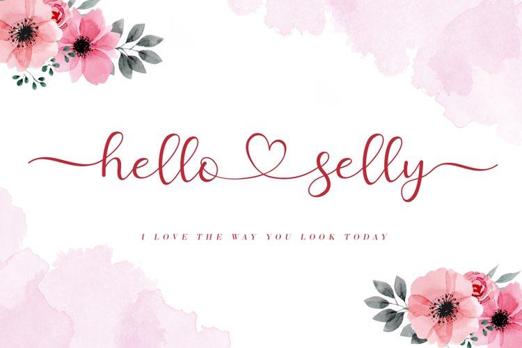 Hello Selly example image 1
