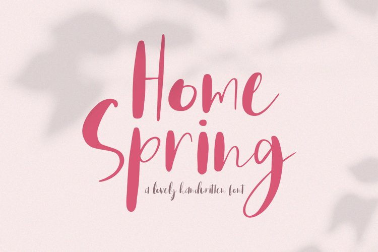 Home Spring // Handwritten Font example image 1