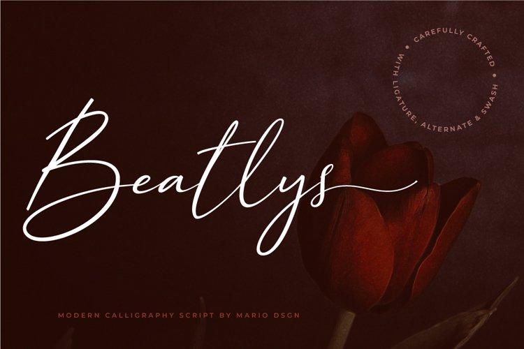 Beatlys example image 1