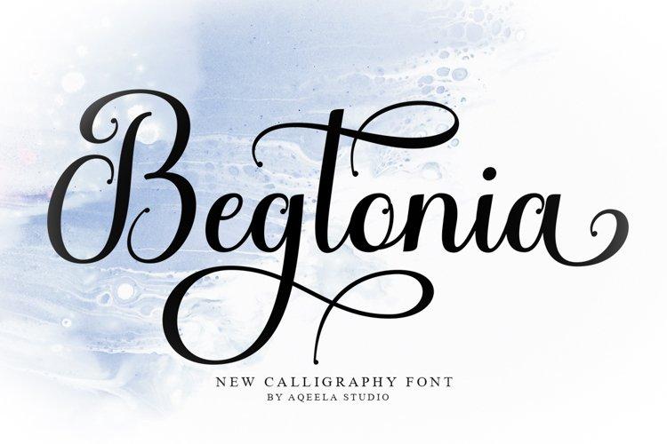 Begtonia example image 1