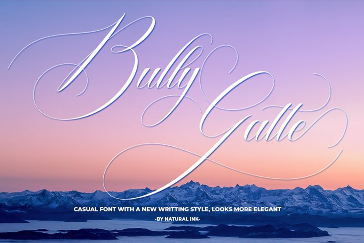 Bully Gatte example image 1