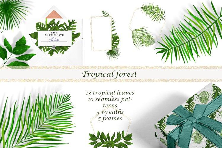 Digital rainforest, tropical leaves