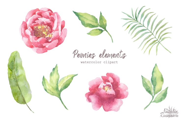 Watercolor Peonies set - Free Design of The Week Design1