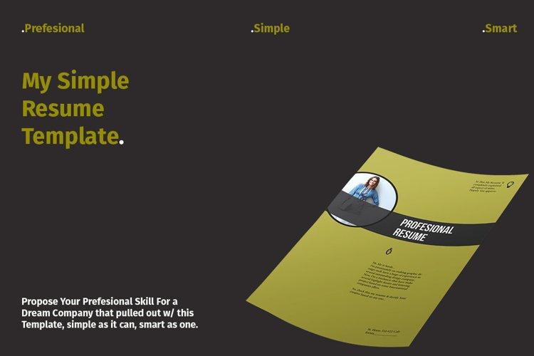 Profesional Resume example image 1