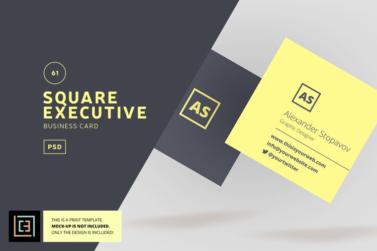 Square Executive Business Card - BC061 example image 1