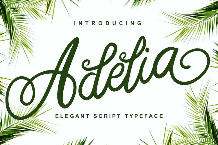 Adelia - Elegant Script Typeface example image 1