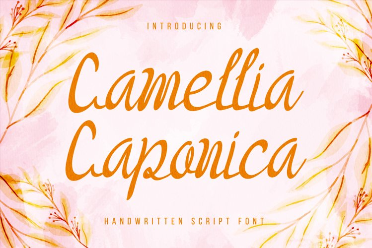 Camellia Caponica - Handwritten calligraphy script font example image 1