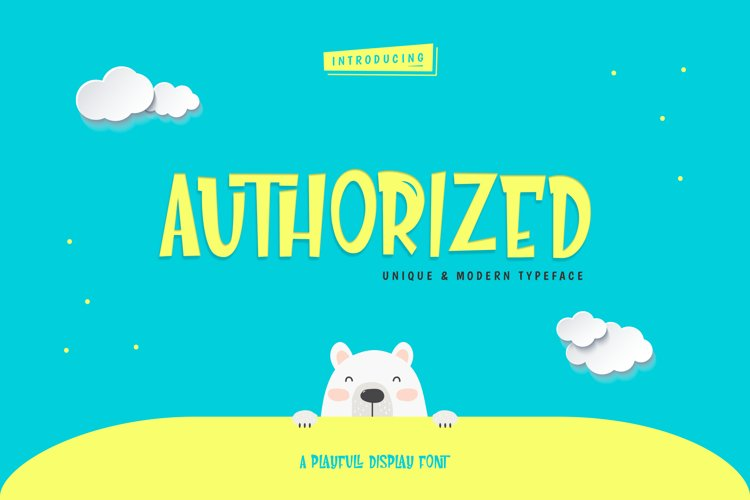 Authorized Playfull Display Font