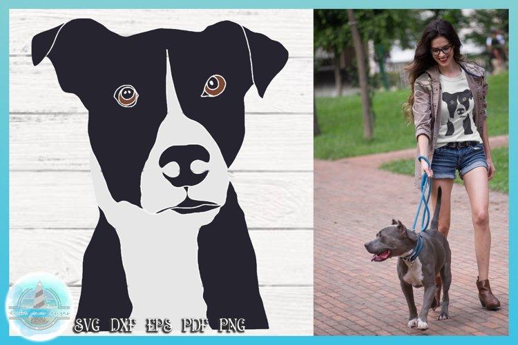 Pit Bull SVG | Dog SVG | Pit Bull Cut File example image 1