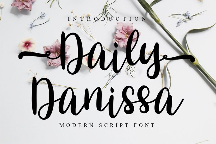 Daily Danissa - Modern Script Font example image 1
