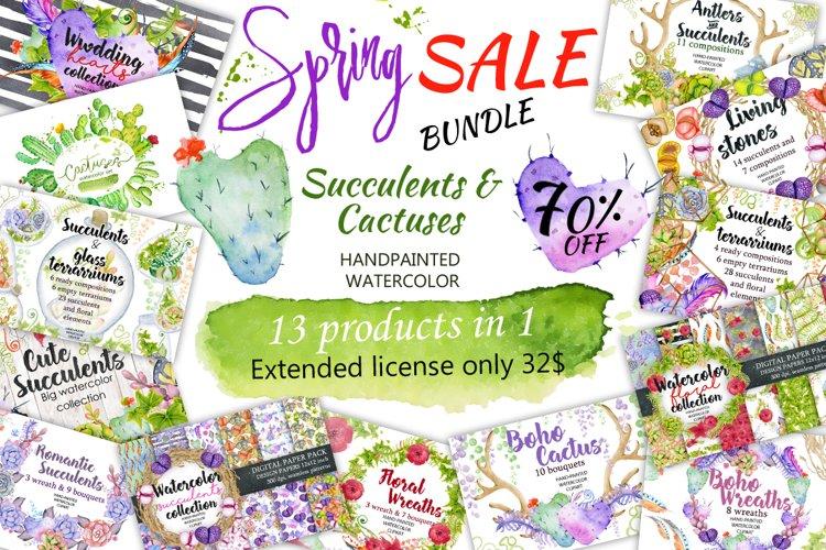 Spring Sale succulents & cactuses watercolor bundle 75% OFF! example image 1