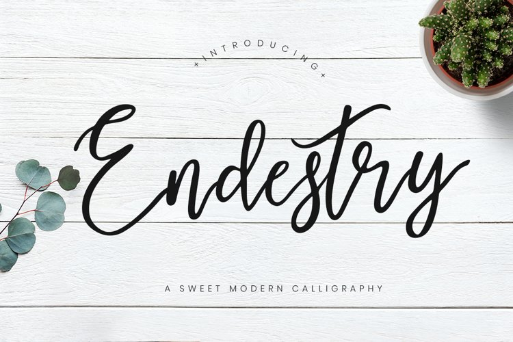 Endestry Modern Calligraphy example image 1