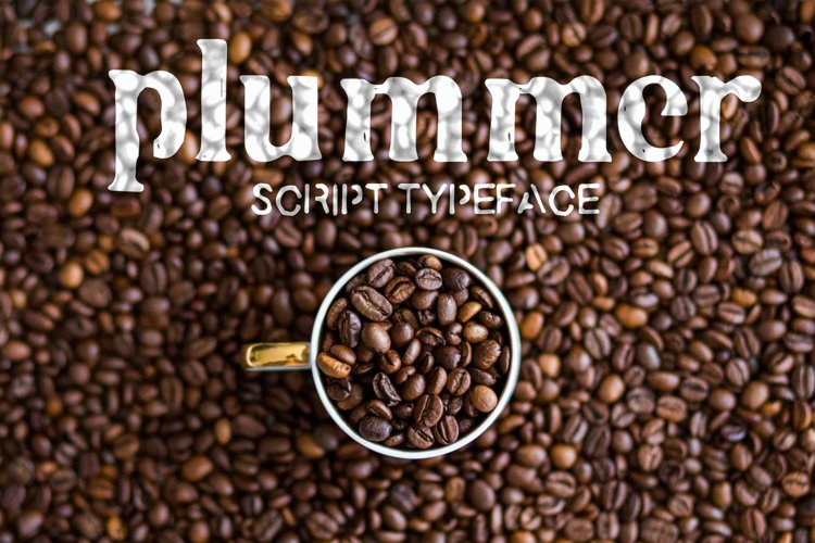 Plummer example image 1