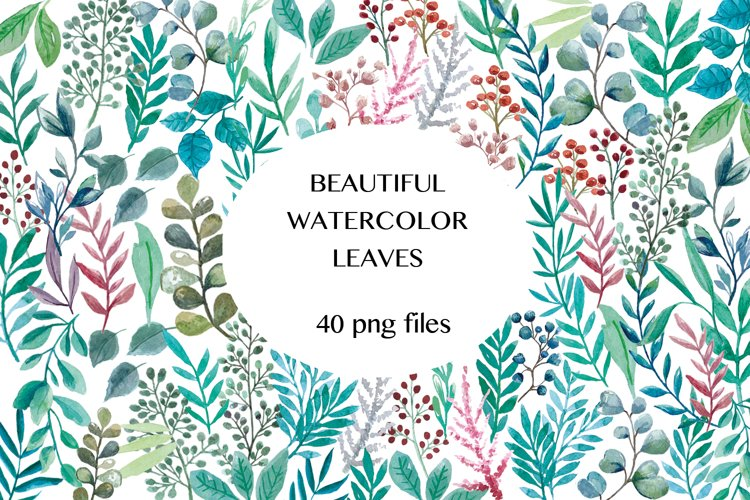 Beautiful Watercolor Leaves Illustrations