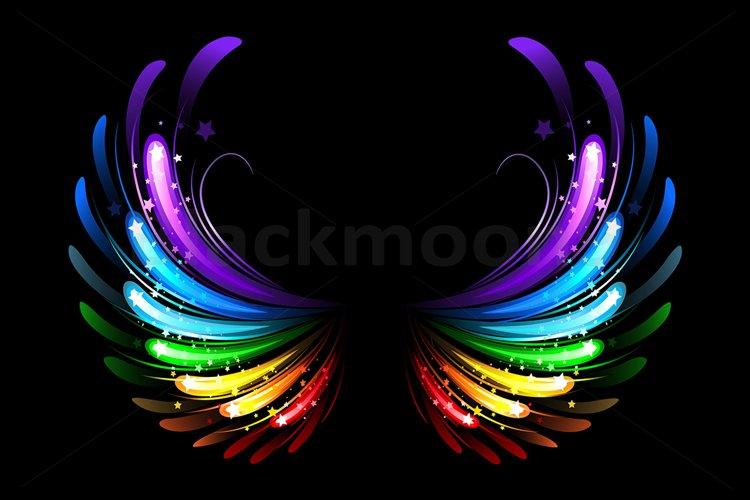 Rainbow Wings example image 1