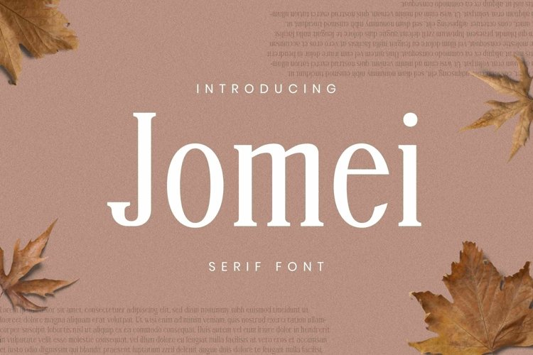 Web Font Jomei Font example image 1