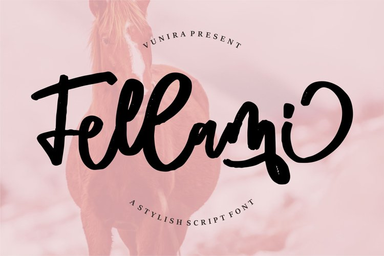 Fellami   A Stylish Script Font example image 1