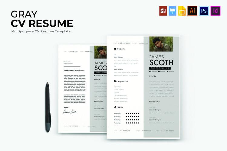Gray | CV & Resume example image 1