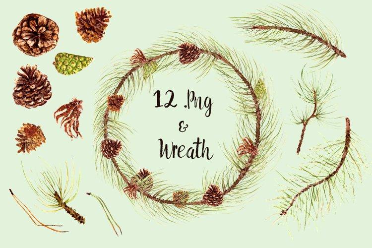 Watercolor Pine Clip Art Set + Wreath example image 1