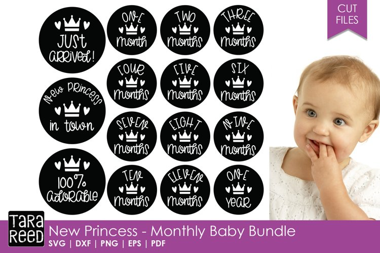 New Princess - Monthly Baby Bundle example image 1