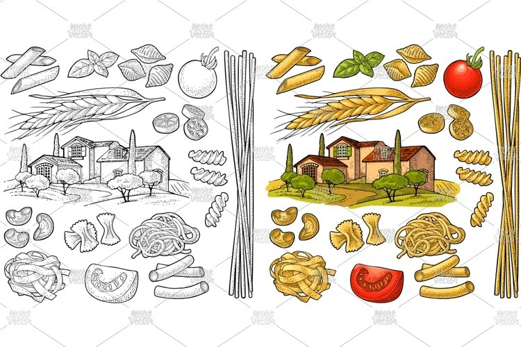 Different types macaroni and farm Vector vintage engraving