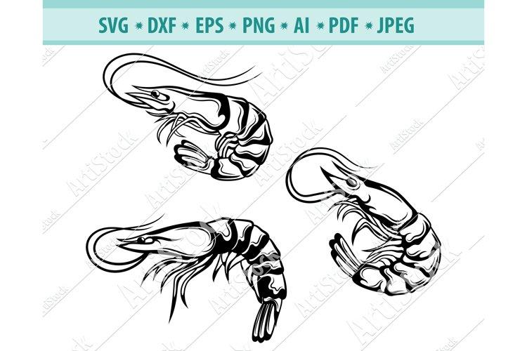 Shrimp Svg, Beach Svg, Ocean Svg, Sea Animals Dxf, Png, Eps example image 1