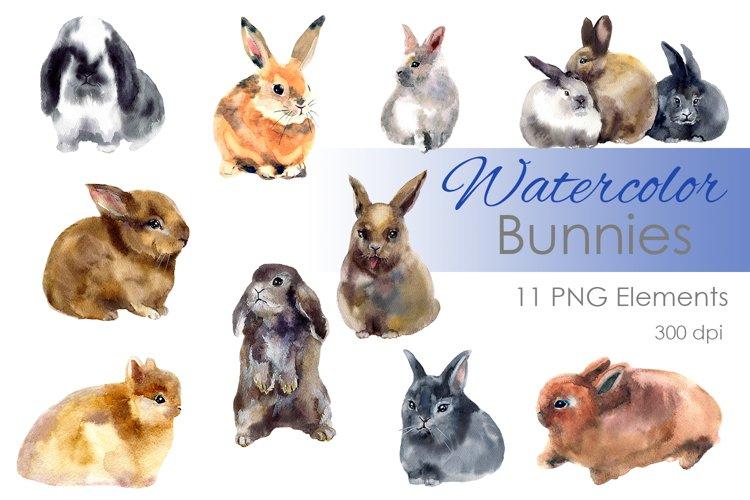 Watercolor Easter Clipart. Digital clipart. Bunny art