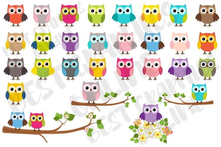 Owl clipart set, Cute little owls clip art, Flowers, Branch