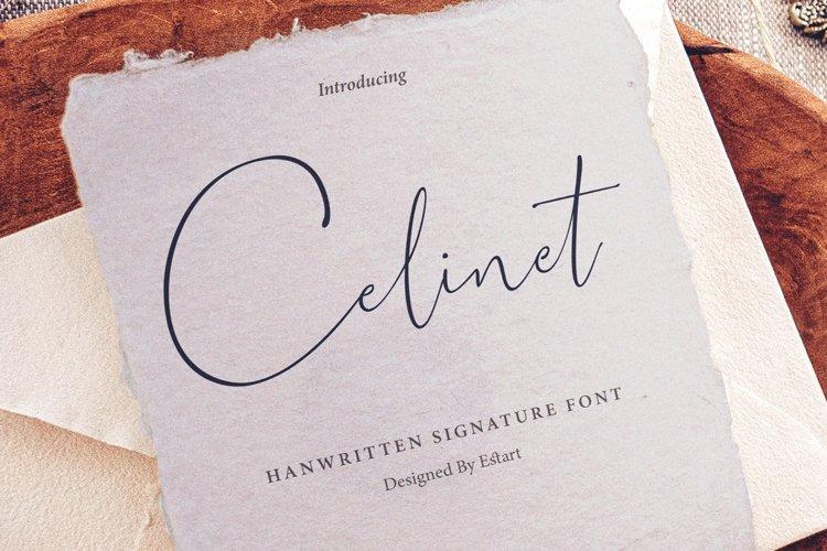 Celinet / Script font example image 1