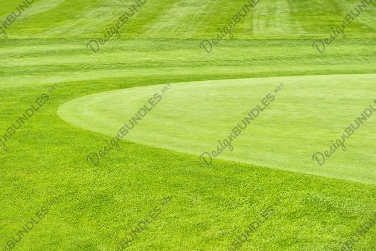 Golf field Green grass field background example image 1