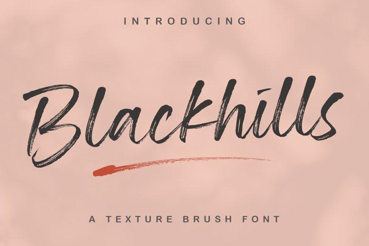 Blackhills - Brush Fonts example image 1