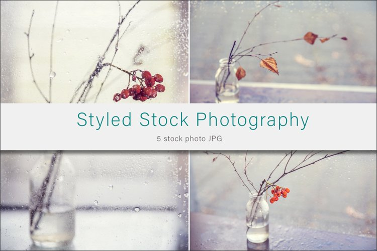 Autumn Rain Styled Stock Photo example image 1