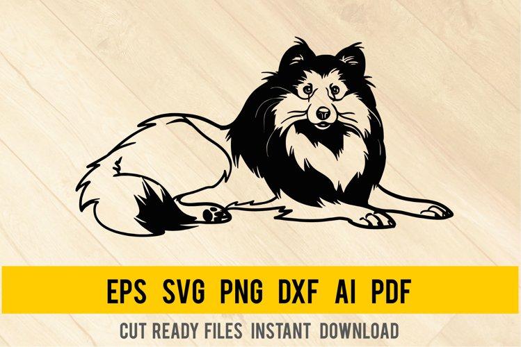 Shetland Sheepdog Dog svg, Breed Dogs SVG, Pet Pup example image 1