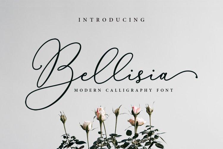 Bellisia Script example image 1