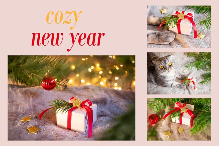 Cozy new year gift, 4 pictures
